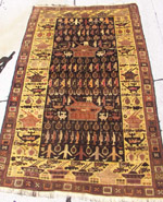 Old War Rug with Burkas